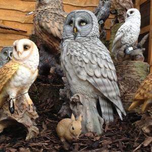 Shepperton Owls 2