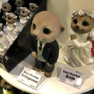 Meerkat Bride & Groom