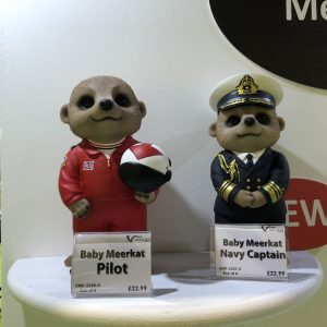 Meerkat Pilot & Navy Captain